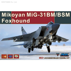 1/48 미코얀 MiG-31BM / BSM 폭스 하운드